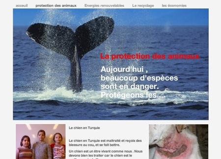 Jeudi le groupe des grands à réalisé un blog sur le thème de l'environnement, bonne visite !!